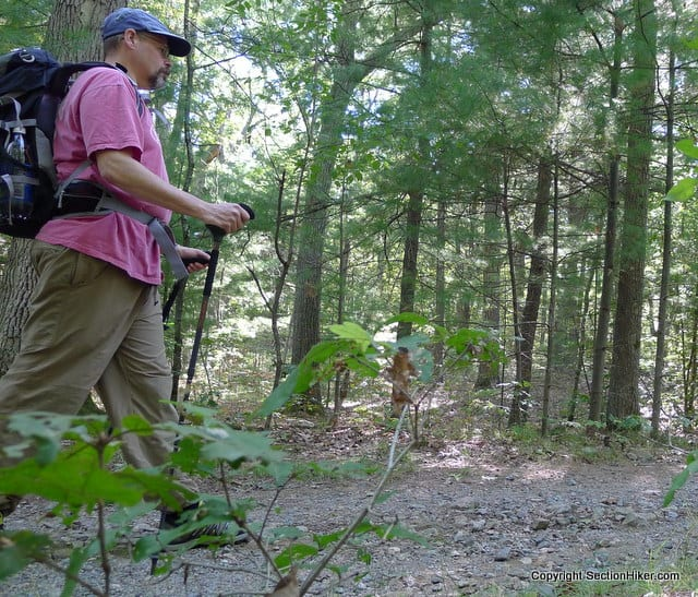 Hiking in the Middlesex Fells with my Pacerpoles