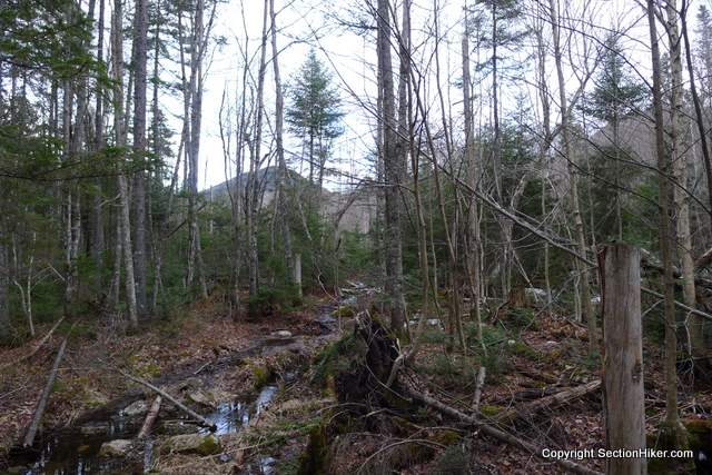 Headed southeast on a wet Carrigan Notch Trail, with Mt Anderson or Vose Spur visible through the trees.