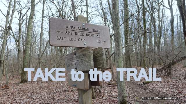 Take to the Trail