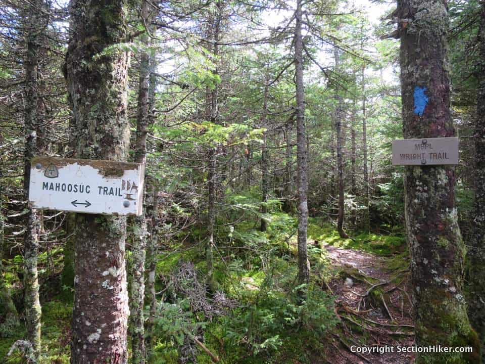 The Wright Trail is a blue blazed side trail off the Maine A.