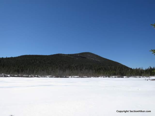 The Trailless summit of Mt Anderson across Norcross Pond