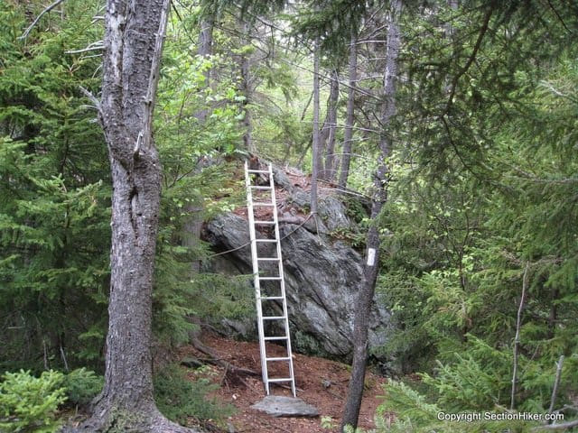 Ladder on the Massachusetts Appalachian Trail
