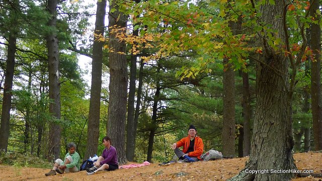 Lunch Break in Old Growth Forest