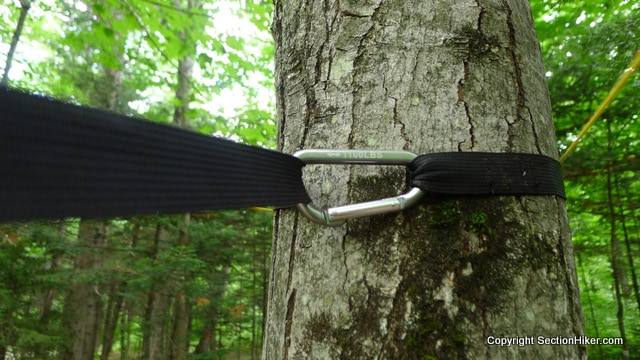 The Warbonnet Blackbird is suspended from a tree using a simple webbing strap tree hugger style suspension system, secured with a carabiner.