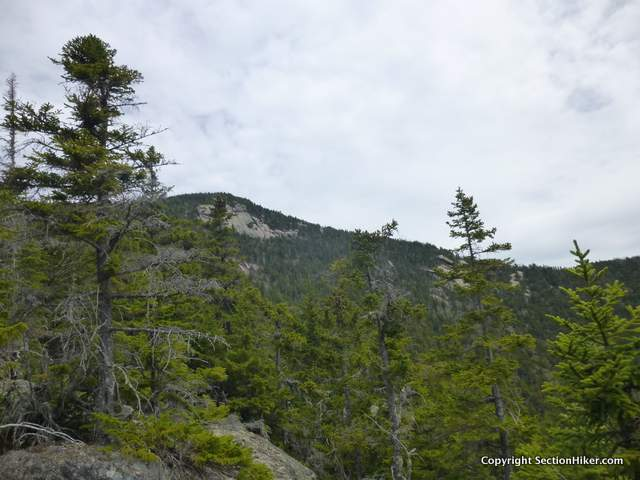Good view of Whiteface from the McCrillis Trail