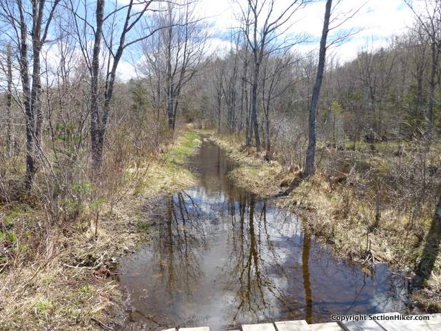 That's not a stream. That's the Guinea Pond Trail!
