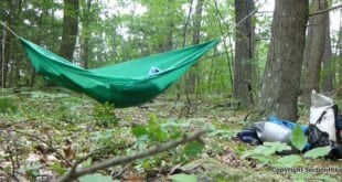 Hummingbird Hammock Single Hammock Review