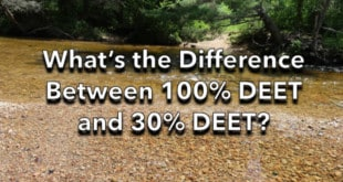 What's the Difference between 100% DEET and 30% DEET