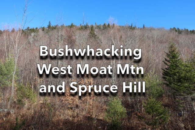 Bushwhacking West Moat Mtn and Spruce Hill