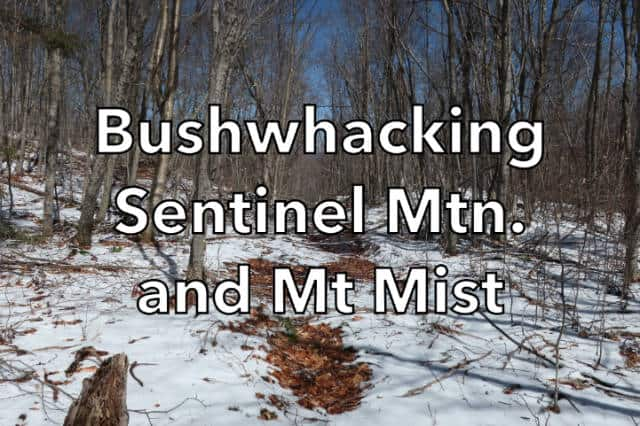 Bushwhacking Sentinel Mountain and Mt Mist