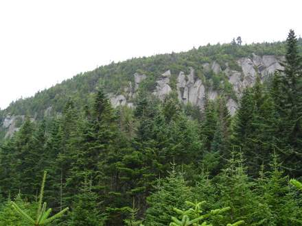 Cliffs from Reel Brook Trail, New Hampshire